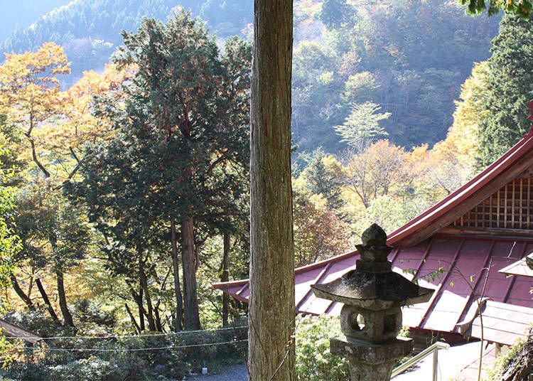 """What is """"Shukubo"""" Temple Lodging?"""