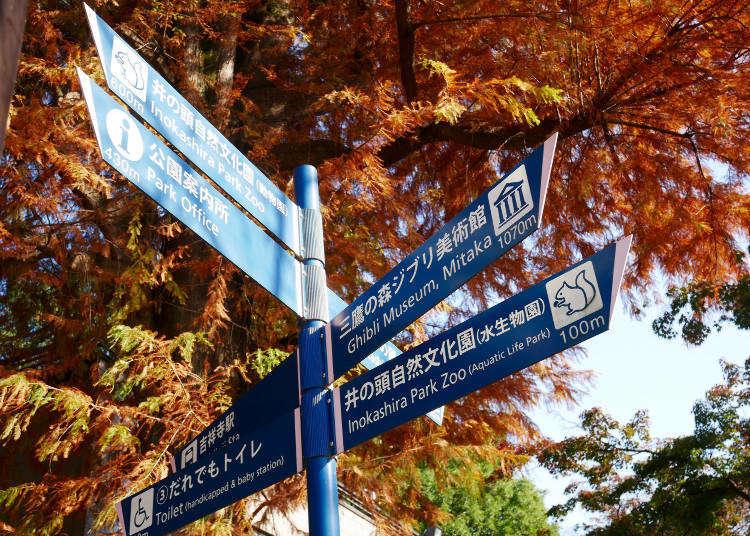 도쿄여행코스 - 키치죠지(기치조지) 관광을 위한 맛집과 카페, 공원 등 볼거리 소개!
