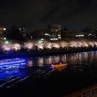 Tokyo Sakura Cherry Blossom Night Cruise on the Sumida River