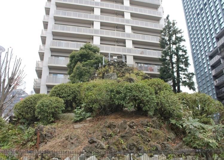 赤木先生推薦清單7 赤木先生同事推薦 「成子天神社」有迷你富士山?!