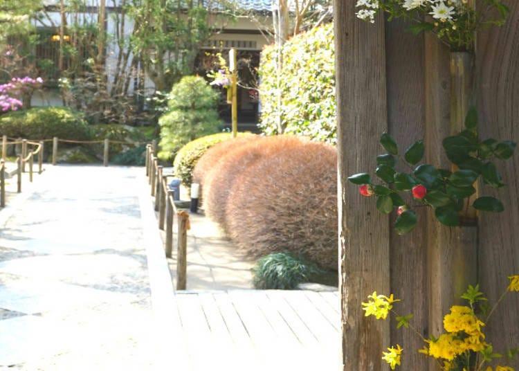 不只紫陽花,明月院擁攬四季花朵,院內遍佈國家史跡