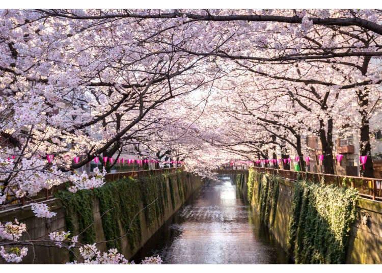 【春季】3月、4月、5月天氣&穿搭建議