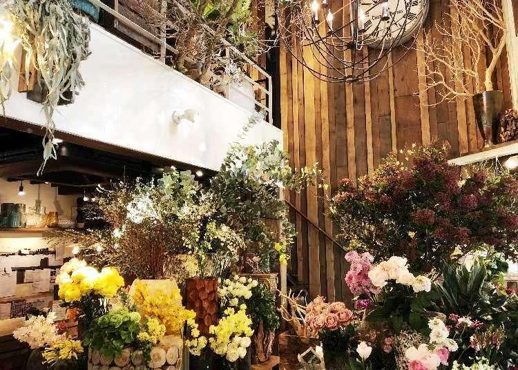 도쿄 카페-긴자,롯폰기(롯본기) 근교 히로오의 분위기좋은 트리하우스 카페[Les Grands Arbres]