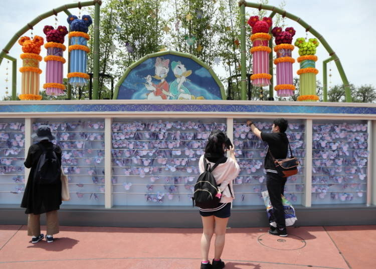 TDL/ Wishes Do Come True! Make a Wish at the Wishing Place!