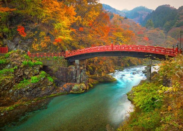 [MOVIE] 日光の魅力を感じる旅 ~外国人おすすめスポット&日本人が語る!日光の伝統文化~