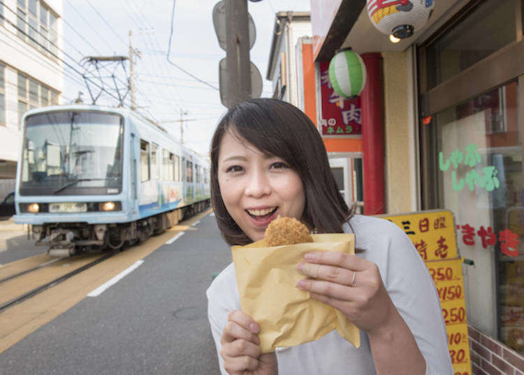 Kamakura Day Trip Ideas: Trainspotting and traveling along the quaint Enoden Railway!