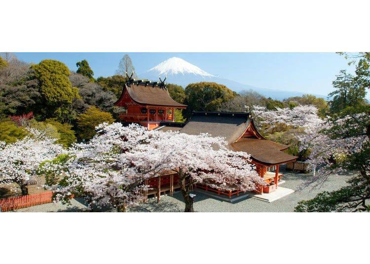 富士山是私有地?還是屬國家所有呢?