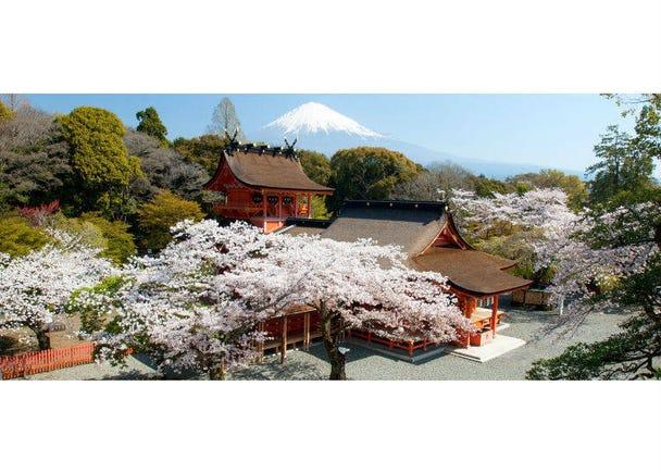 認識富士山⑤富士山是私有地?還是屬國家所有呢?