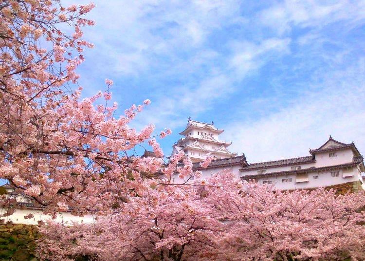 ◆ 1位 姫路城(兵庫県)