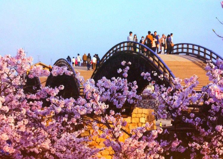 ◆ 13位 錦帯橋(山口県)