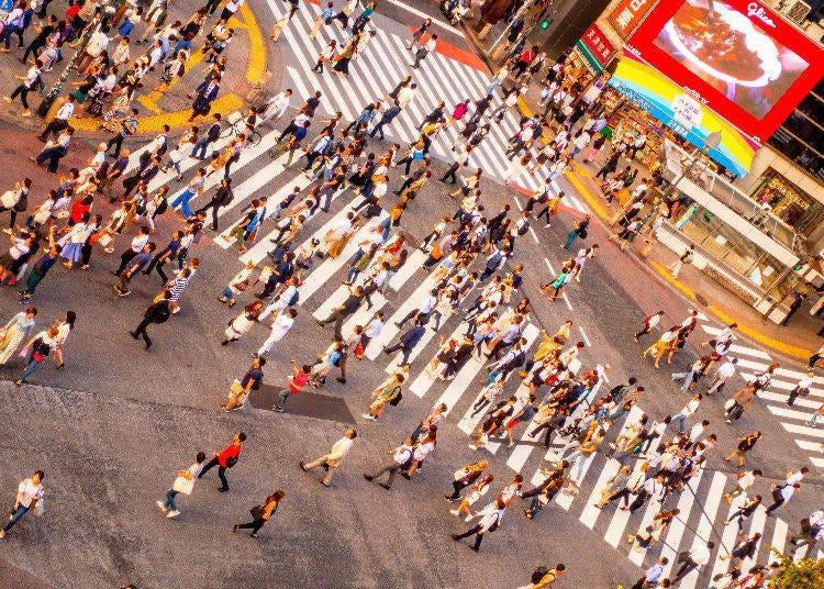 10. 교차점을 걷는 거리는 최대 44M! 천천히 걸어갈 여유가 없다.