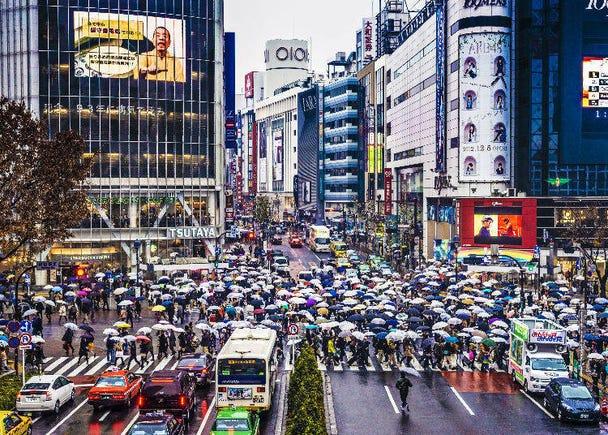 秘密7〉日本人親身傳授,下雨天在這裡也別有樂趣唷!