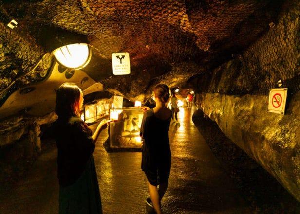 [2부중 2부]도쿄자유여행 필수코스는 바로 가마쿠라 에노시마! 그중 에노시마섬의 볼거리 탐방!!