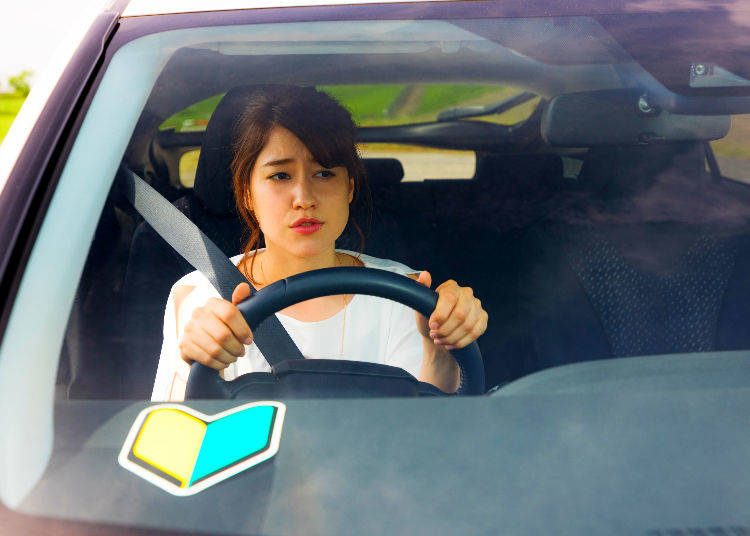 11. Paper Driver ペーパードライバー