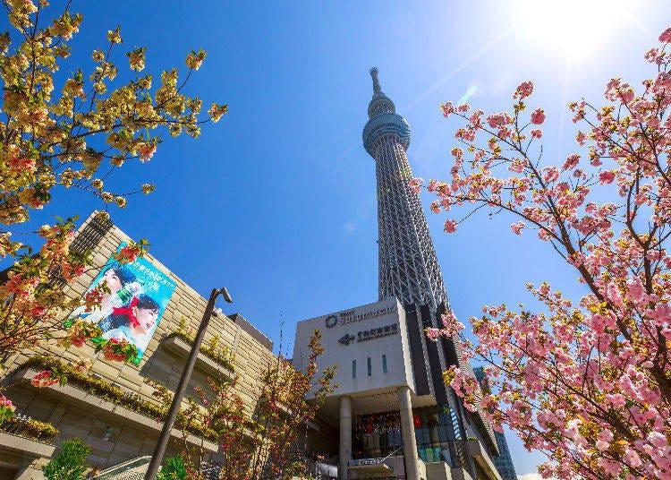 Solamachi (Tokyo Skytree)