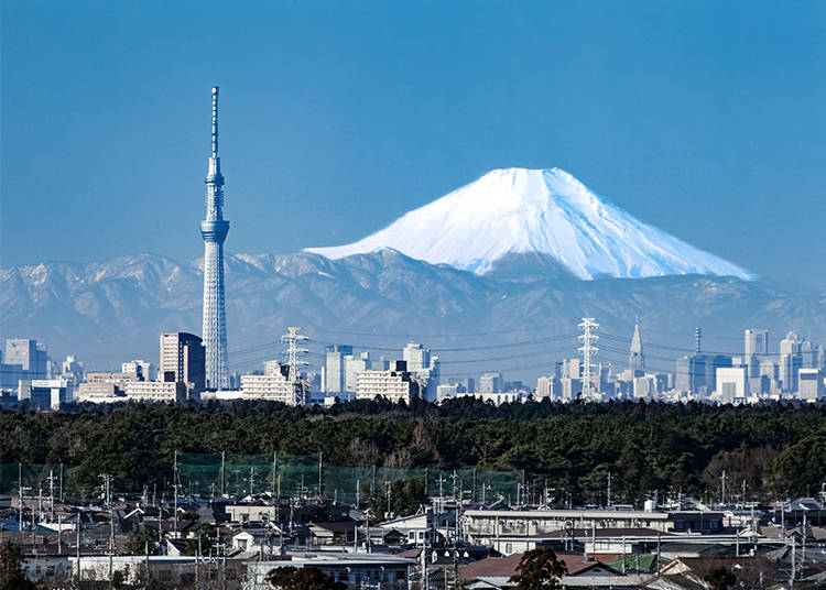 Tokyo Skytree and Skyscrapers Around the World
