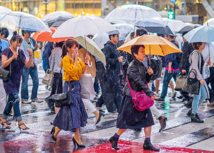 What to Do in Tokyo When it's Raining? 10 Ways To Enjoy A Rainy Day In Tokyo!