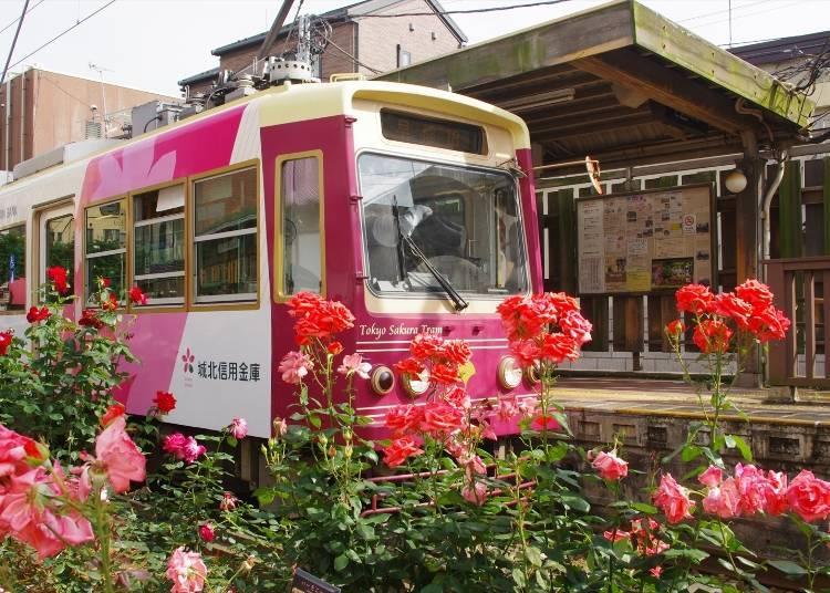 Rose Viewing Spot #1: Retro Minowabashi Station