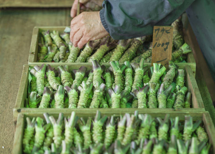 5. Real wasabi is expensive