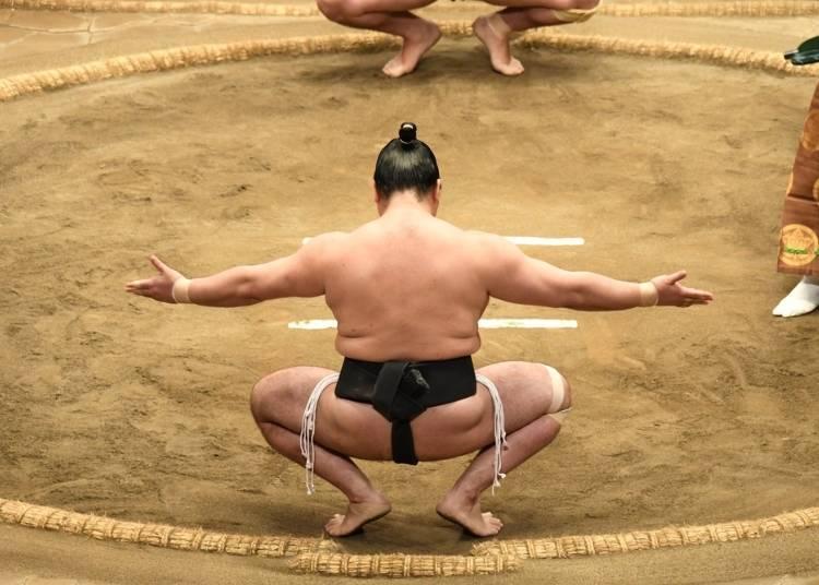 用眼睛看就好的「相撲」?