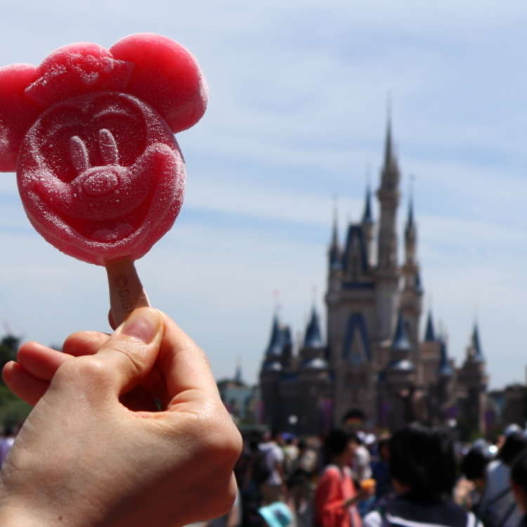 Tokyo Disney Resort: Classic Take-Out Foods Selected by a Hardcore Disney Fan!