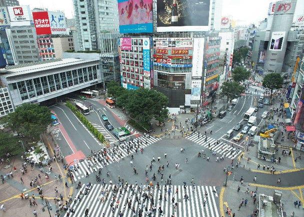 크리싱뷰(Crossing View) – 시부야 스크램블 교차로의 풍경을 감상할 수 있는 새로운 관광명소!