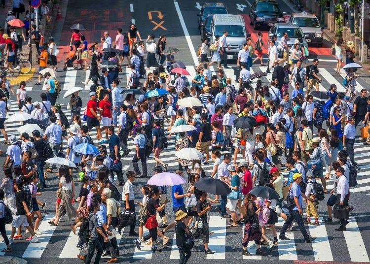 8. The Strange Sights of Summer in Tokyo