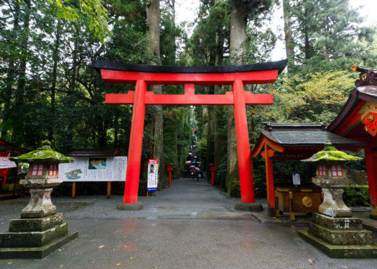 Boost Your Luck in Sport and Business! Hakone Shrine is a Power Spot for Luck