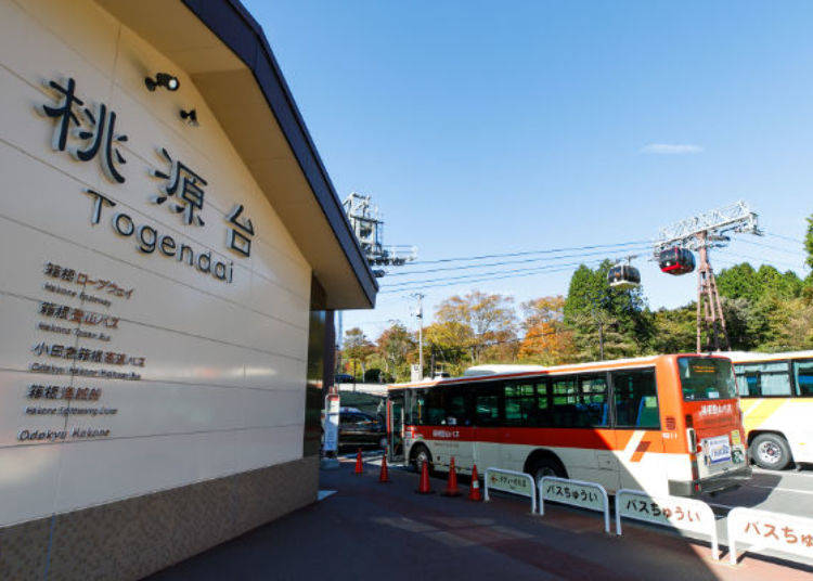 Take the Scenic Route! See the Sengoku Pampas Grass - Chosen as one of Kanagawa's 50 Scenic Spots!