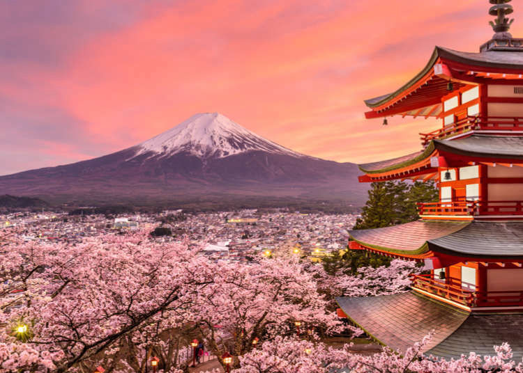 Japan Travel Tips: 8 Things I Wish I'd Known Before Going to Japan