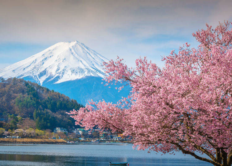 3. Connection between the Weather on the Ground and Mount Fuji's Climate