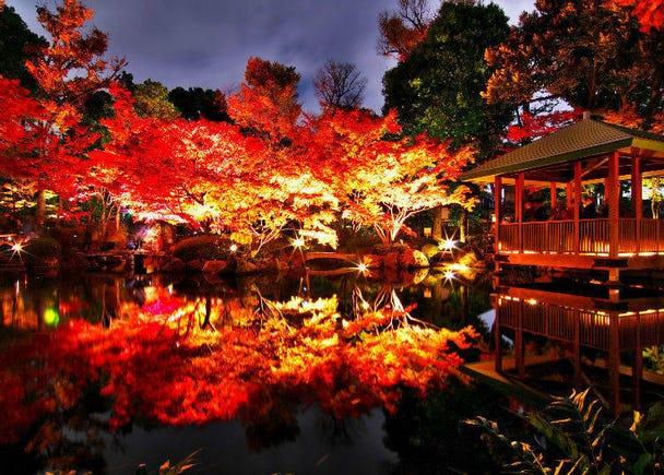 3. Otaguro Park (Ogikubo, Tokyo)