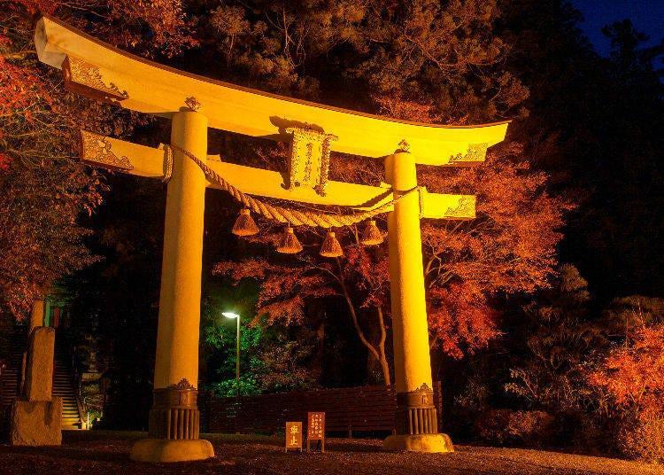 5. Nagatoro Autumn Leaf Festival (Chichibu, Saitama)