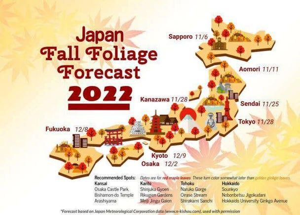 Autumn in Japan 2020: Fall Foliage Calendar & Forecast
