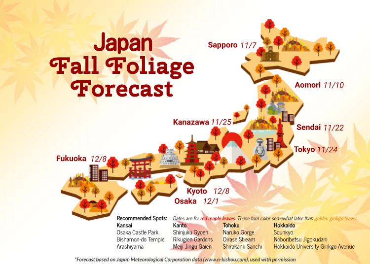 일본단풍시기 - 일본으로 단풍여행에 떠난다면 체크해보자! 2019년편