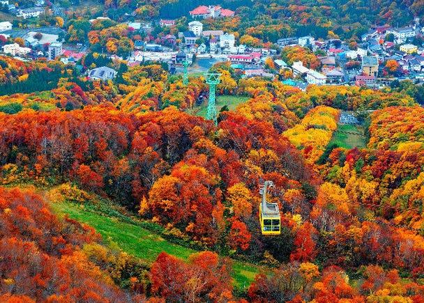 2. Tohoku: Best time for fall leaves