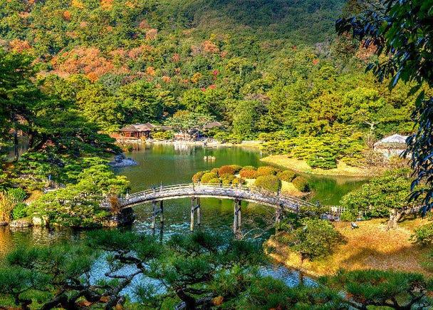 8. Shikoku: Fall Foliage
