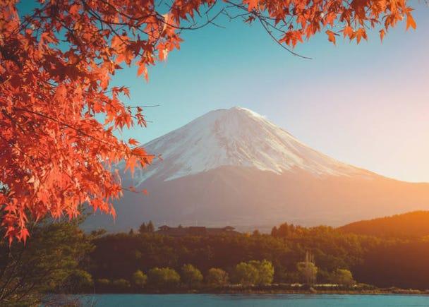 5. It's the perfect season to enjoy views of Mt. Fuji