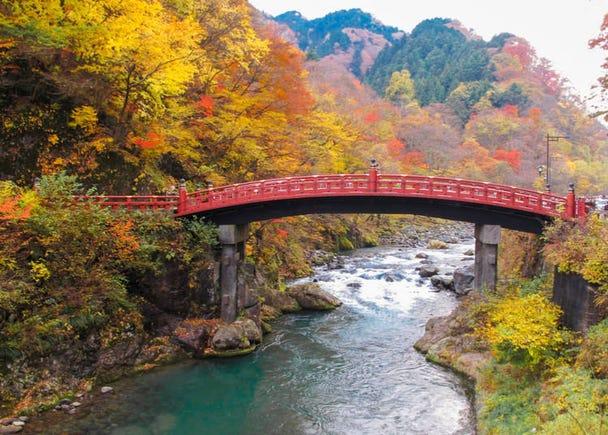 3. Autumn foliage is fantastic!
