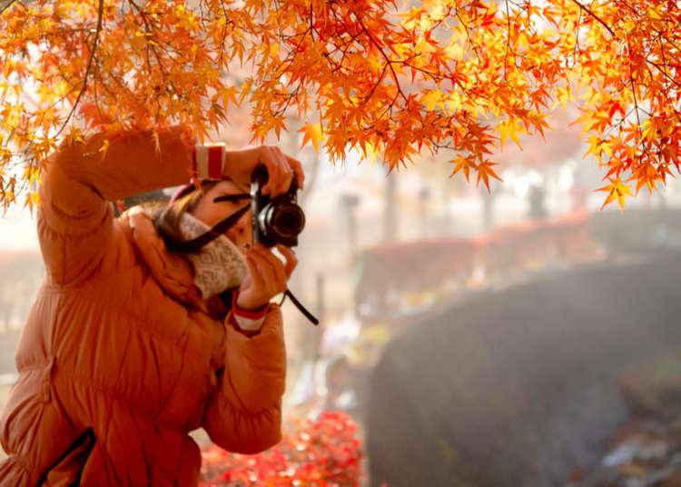 Tips & Advice for Planning a Trip to Tokyo in Autumn