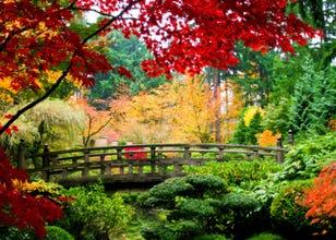 2018년 10월,11월,12월 일본의 지역별 평균날씨와 옷차림!