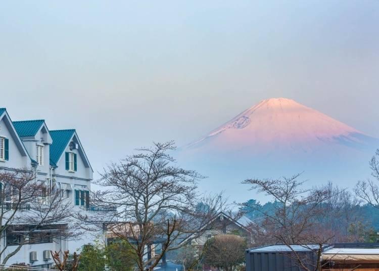 3. Feeling Outdoorsy? Fujino Kirameki