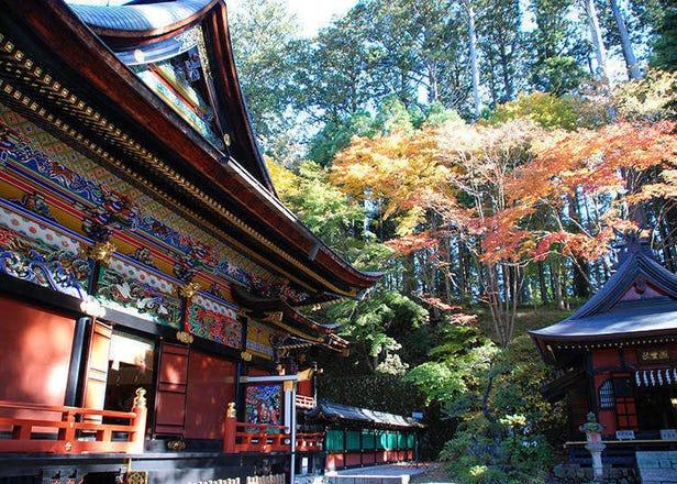 도쿄 근교 여행 – 사이타마현 치치부! 다양한 볼거리와 맛집의 고장, 치치부는 모든 것을 알아본다!