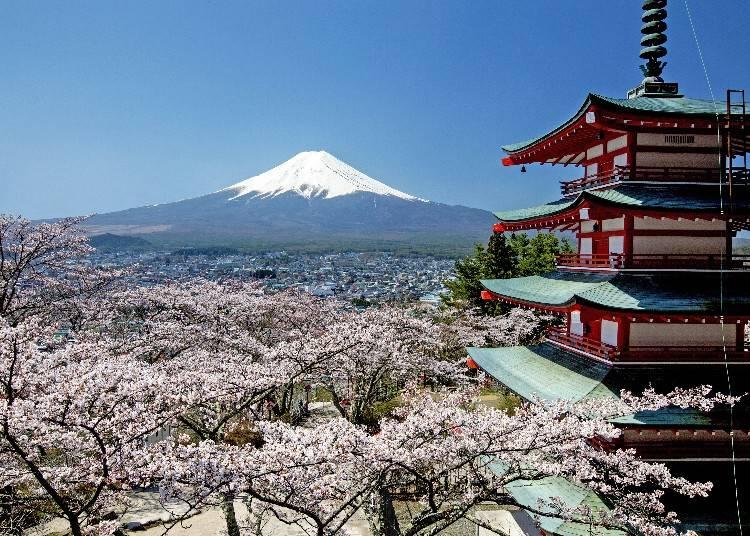 河口湖一日遊行程②可同時瞭望富士山與富士市街景的「新倉山淺間公園」