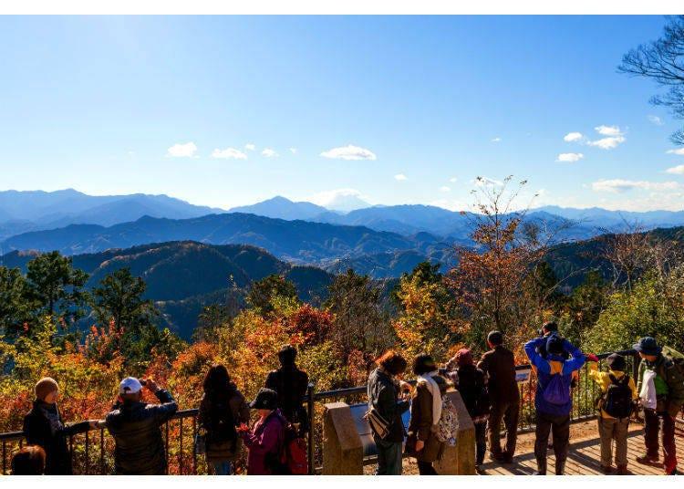 8. Mount Takao: Casual Hiking Close to Tokyo
