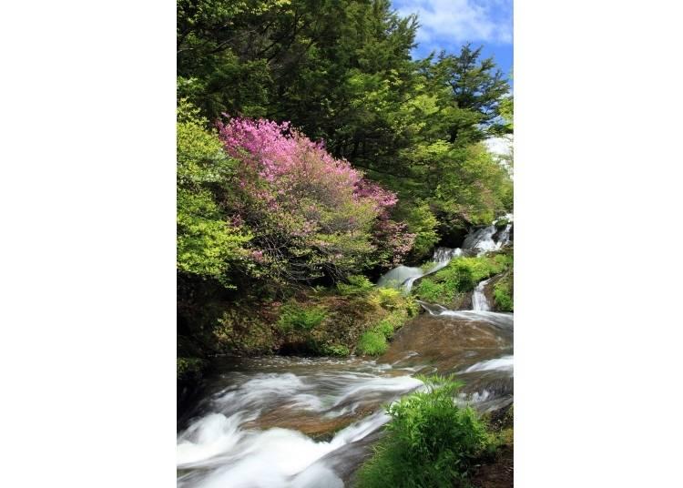 8. Ryuzu Waterfall - Tochigi Prefecture