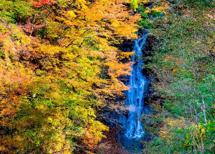 3. Nishizawa Gorge (Nanatsugama Godan no Taki) - Yamanashi Prefecture