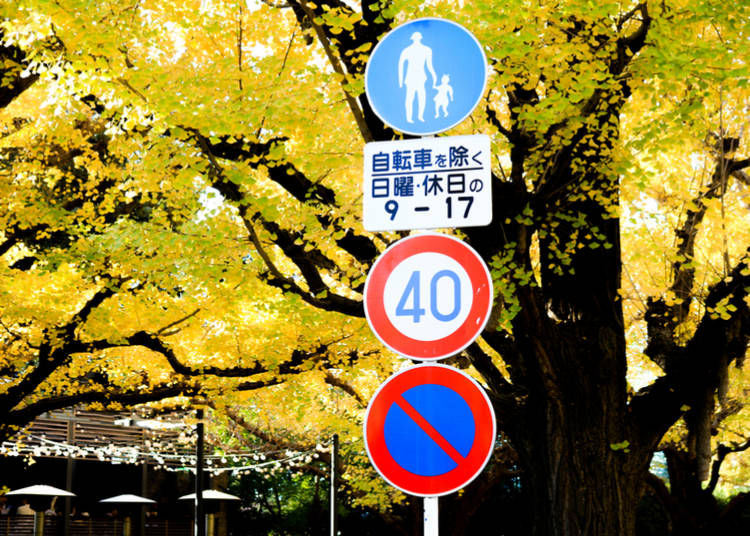 1. Familiarize yourself with the Japanese road signs before you go