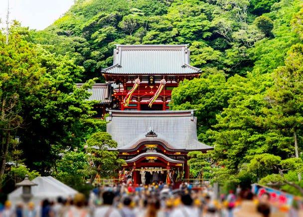 Sightseeing in Kamakura, Japan: Visiting the Ancient Tsurugaoka Hachimangu Shrine
