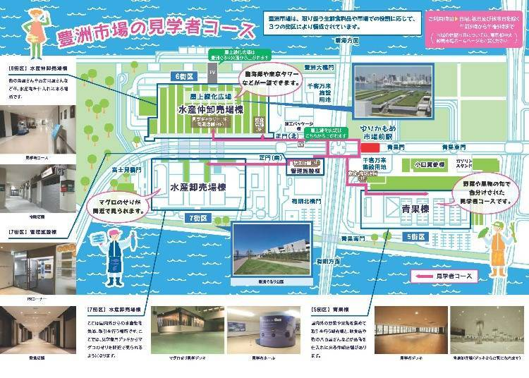 Toyosu Market Guide: Places to see and highlights